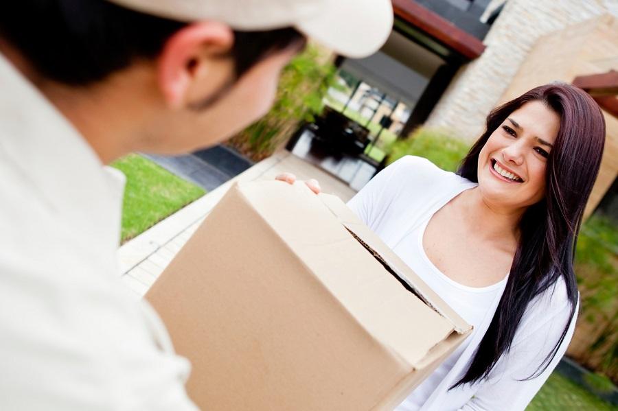 Courier services for efficient deliveries of parcels